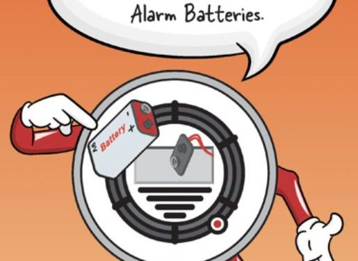 Alarm Batteries